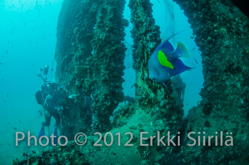 Egypt34-copyright2013-ErkkiSiirila