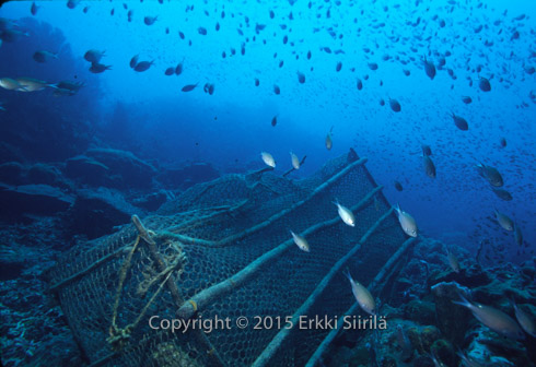 Fish trap on a Saint Lucian coral reef in the Caribbean. Trap fishing in reef areas needs to be regulated. Photographer and copyright (c) 2015 Erkki Siirila.